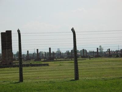 Birkenau 2008 (eigen foto)